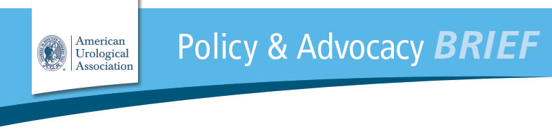 To experience the full, robust online version of the Policy & Advocacy Brief, please download pictures.